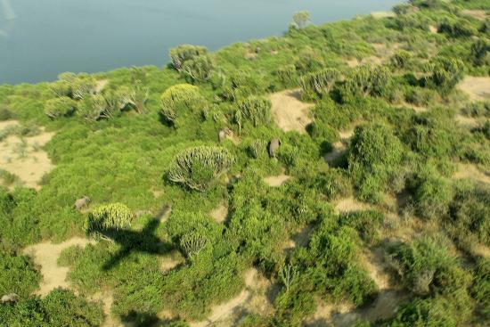 Semliki Safari Lodge: Approach of Semliki