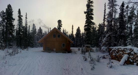 Wheaton River Wilderness Retreat: Front view of cottage