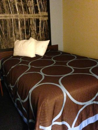 Super 8 Adrian : Updated and Fresh Room