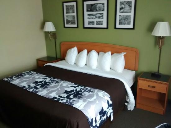 Sleep Inn & Suites: King room, looks recently remodeled.