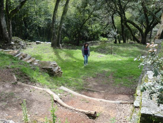 Ranas y Toluquilla Archaeological Site: ancient