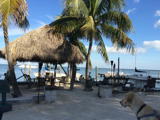 Key Largo Cottages Great Beach Front