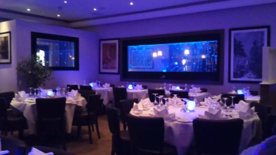 Rang Mohol Bangladeshi and Indian Diner: Deep dark atmosphere with a modern water theme