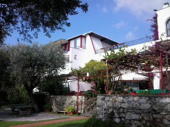 Hotel El Chico : vue sur l'espace petit-déjeuner