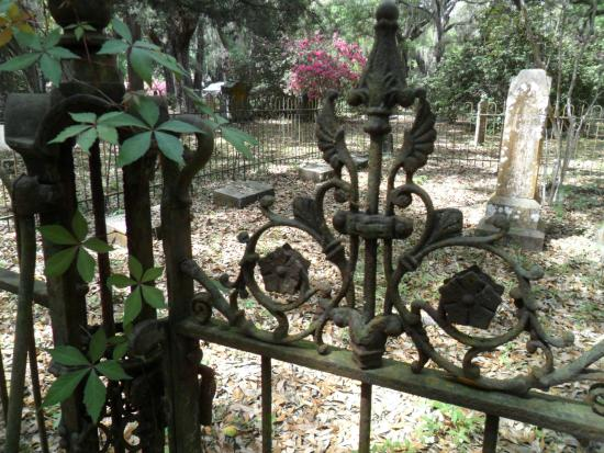 Micanopy Cemetery: pIot fence