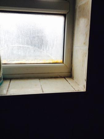 Cottage 76: Finestrina del bagno