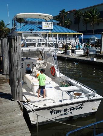 Fish N Fever