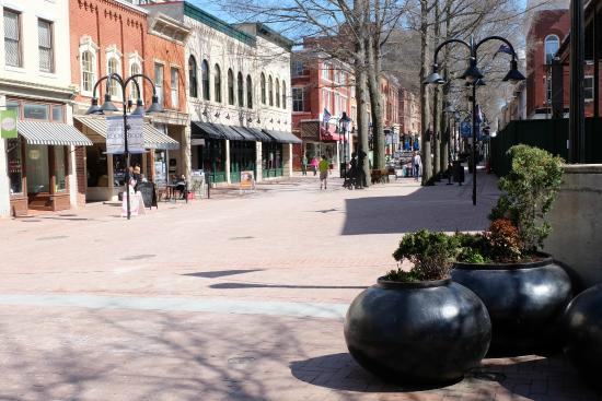 Historic Downtown Mall: The Pedestrain walk with shops along the way.