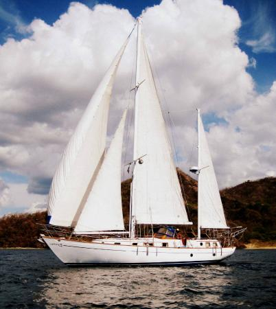 Sea Bird Sailing Excursions: Sea Bird is a 45' C & L Marine Explorer