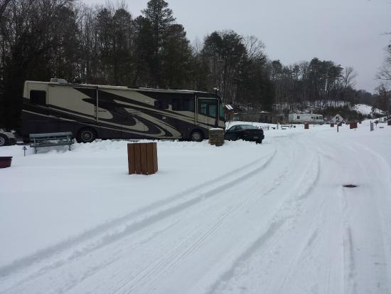 Bear Cove Village : Our beautiful campsite!