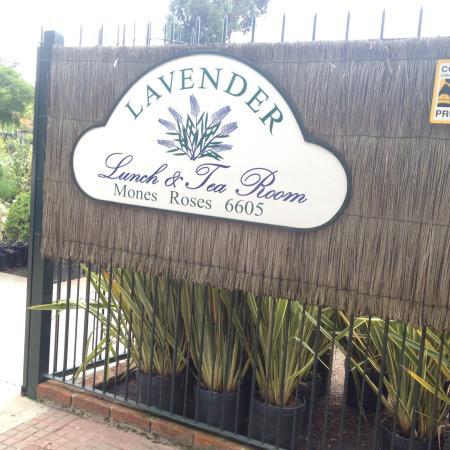 Lavander Gifts and Tea room: Lavanderia