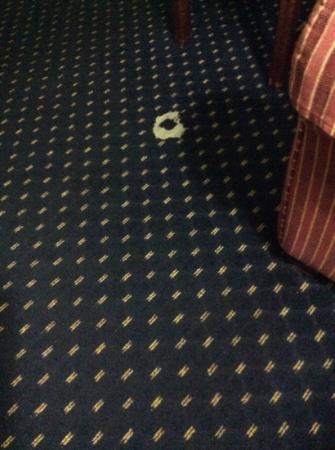 Baymont Inn & Suites Tallahassee: big hole in carpet...everything old and outdated!