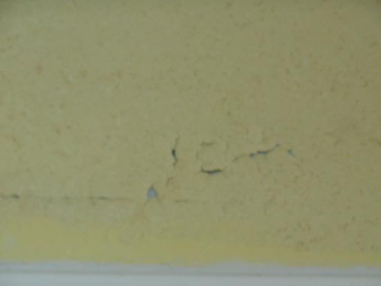 Baymont Inn & Suites Daytona Beach / Ormond Beach: shower wall