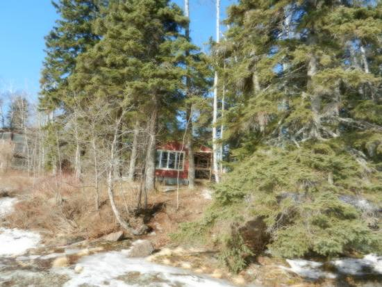 Gooseberry Cabins: Cabin #1