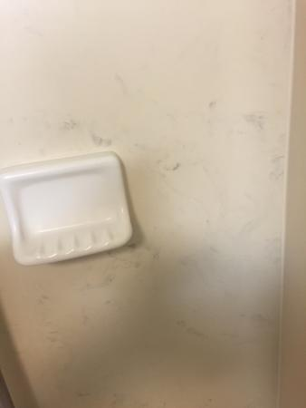 Hampton Inn & Suites Atlanta/Duluth/Gwinnett County : This is the wall of my shower.