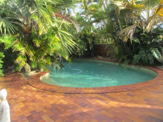 Ballina Palms Boutique Motel: Tropical pool