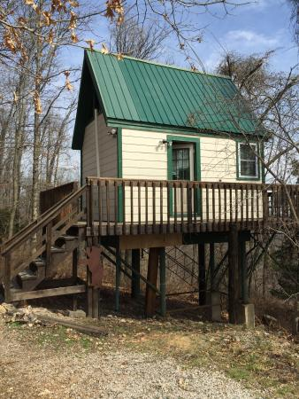 The treehouse picture of turpentine creek overnight for Tree house cabins arkansas