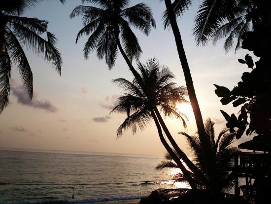 Freddies Santai Sumurtiga: Suasana di awal pagi (sunrise)