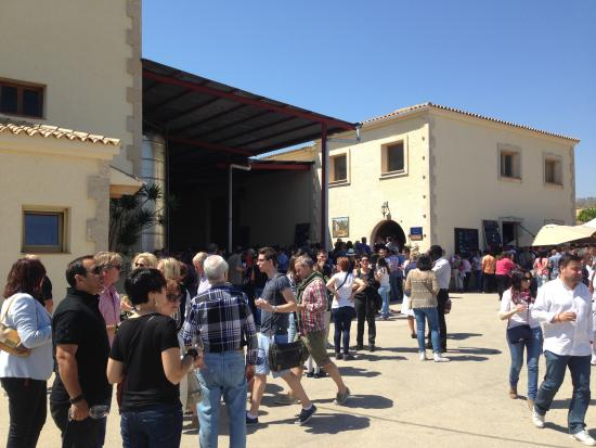 Bodegas Enrique Mendoza: From the open day in April 2014