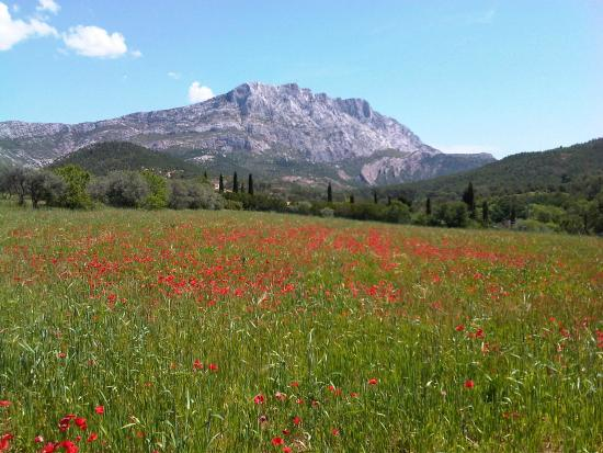 Tours in Provence - Day Tours : St Victoire