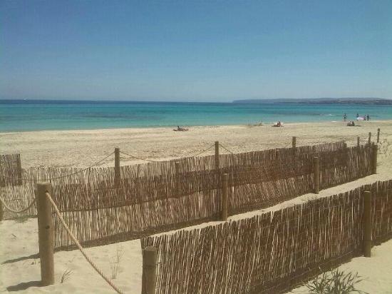 Aquabus Ferry Boats: Pre season Formentera peace