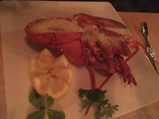 1st Lobster: Yummy lobster