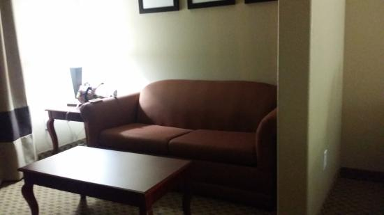 Comfort Suites: pull out couch in double room-allows for an extra person to have semi private space