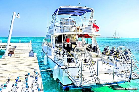 Hugh Parkey's Belize Dive Connection