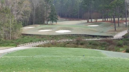 Robert Trent Jones Golf Trail: Hole view at Magnolia Grove