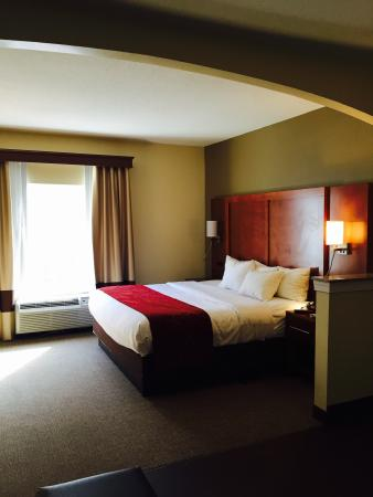 Comfort Suites Newark: My room