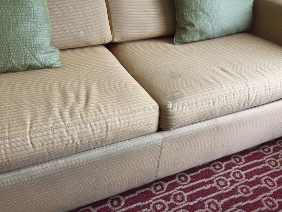 TownePlace Suites Jacksonville: Couch