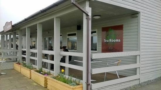 Willow Tree Tea Room
