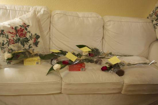 Ally's Guest House: Couch in the front room, flowers for friends on Valentine's Day