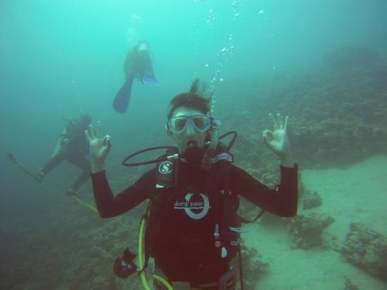 Diving Ocean Makadi Bay: Divine ocean