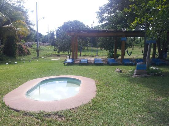Piscina hamacas cobran foto de cenote san ignacio for Hamacas de piscina
