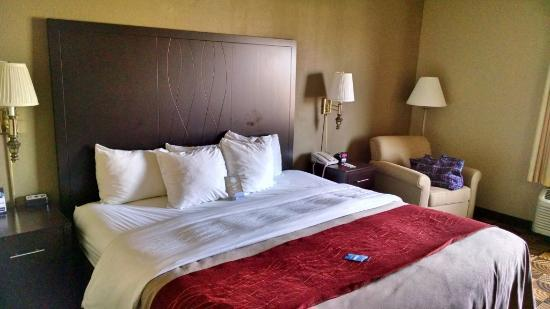 Comfort Inn & Suites N at Pyramids: room