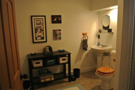 Les Chalets du Trappeur : salle de bain du bas