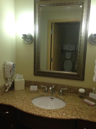 Homewood Suites by Hilton Columbus: suite bathroom