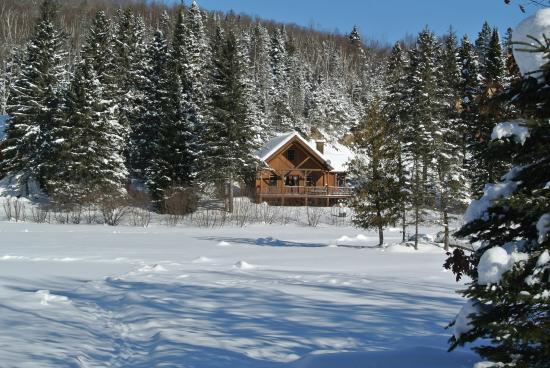 Les Chalets du Trappeur : vue du lac gelé