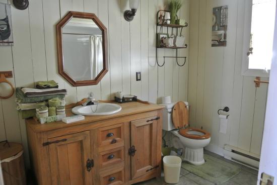 Les Chalets du Trappeur : salle de bain rez de chaussé