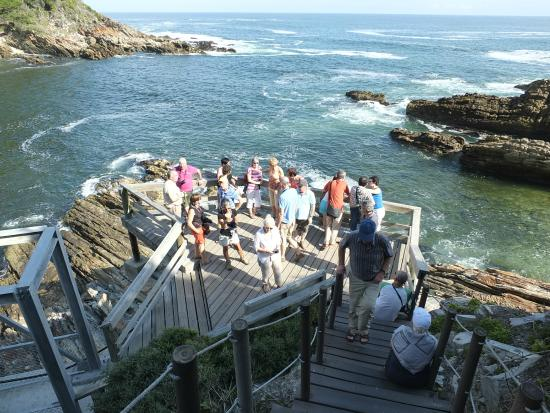 Knysna, Zuid-Afrika: Garden Route