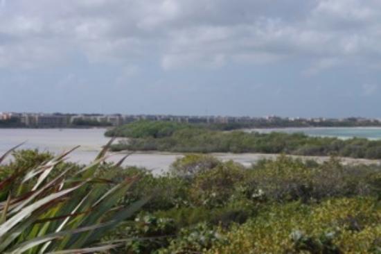 Pestana Cayo Coco All Inclusive : view of the hotel strip at Flamenco Bay