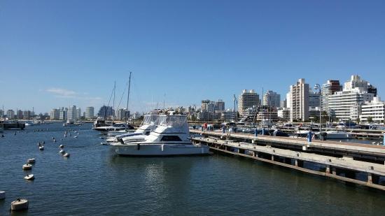 ميناء بونتا دل استي