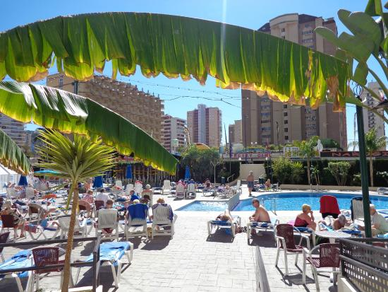 Hotel Ambassador Playa I & II : outdoor pool area