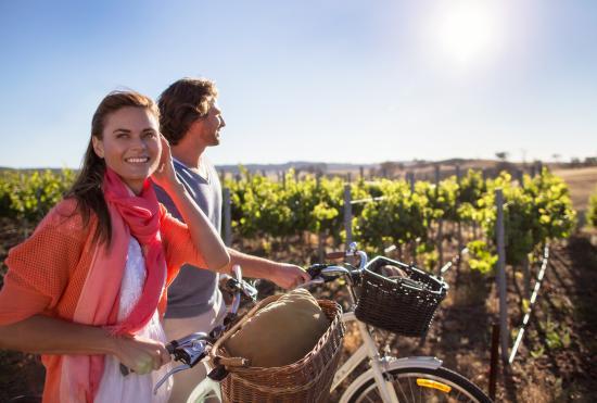 South Australia, Australia: Jacob's Creek Winery, Barossa