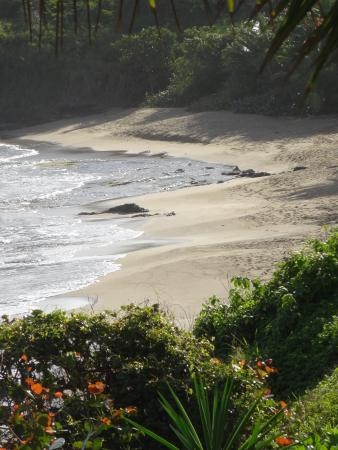 Evamer: View of beach from Mira Coco