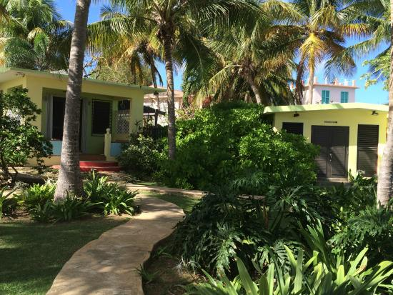 Evamer: Grounds view; El Cottage in background, left.