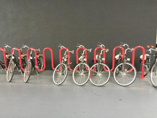 The Line : Bicycles to use and explore