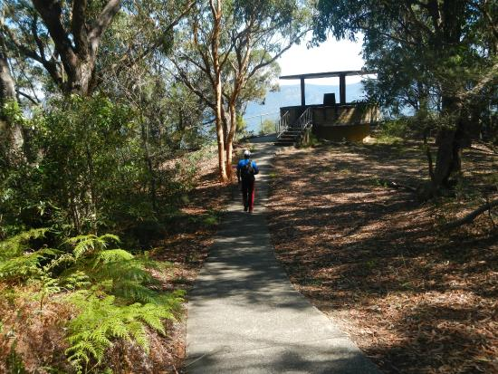 Camden, Australië: Small walk from the parking area