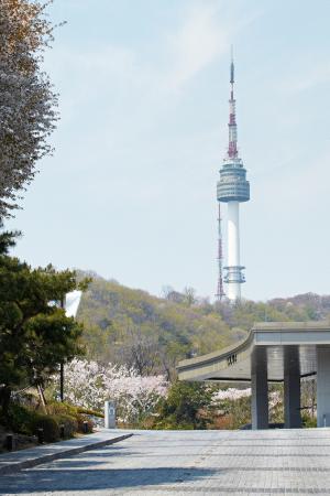 Banyan Tree Club & Spa Seoul : Namsan Tower